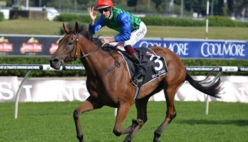 ATC Australian Oaks winner Bonneval (NZ) posted a stunning four and half lengths success in the 2017 renewal of the region's premier fillies Classic.